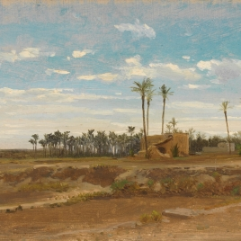 Un bosque de palmeras (Elche)