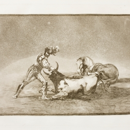 Un caballero español mata un toro después de haber perdido el caballo