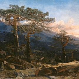 Un paisaje del Guadarrama