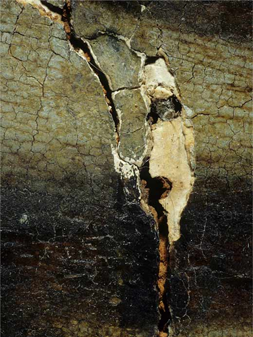 <p>Clavos del engatillado que con el paso del tiempo se oxidaron y dilataron, afectando a la pintura</p>