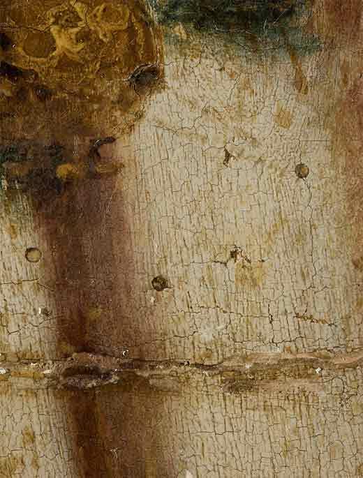 <p>Daños en la tabla y en la pintura provocados por ataques de xilófagos</p>