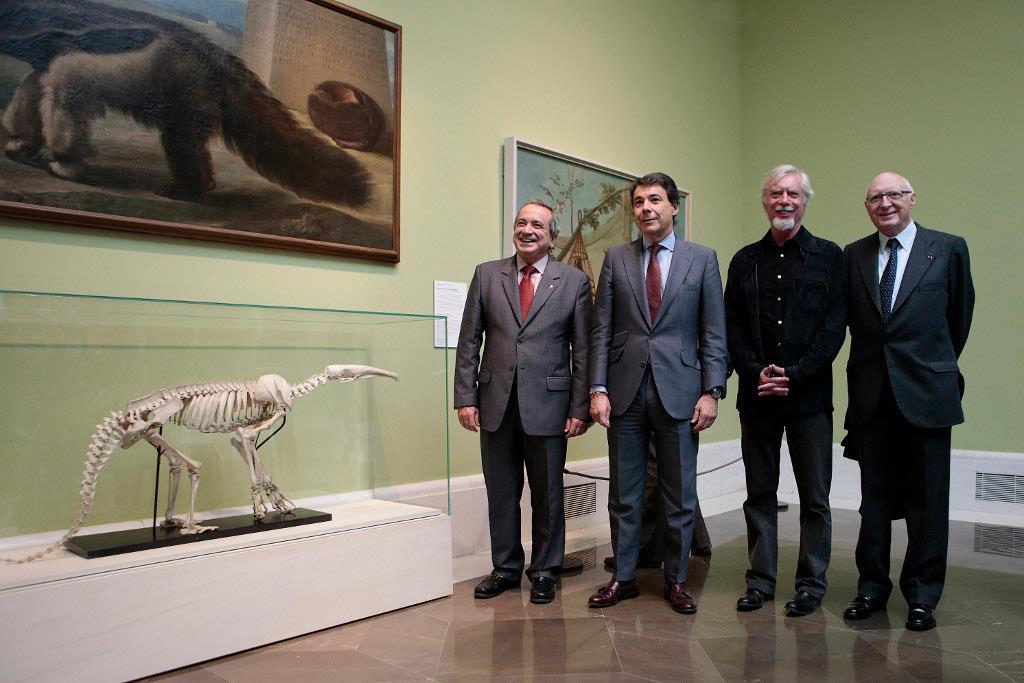 """La Comunidad de Madrid y el CSIC colaboran en la organización de la exposición """"Historias Naturales"""" que celebra el aniversario del Museo del Prado"""
